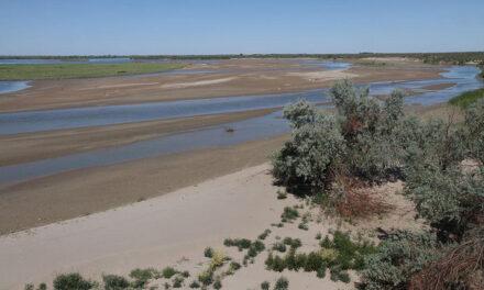 Kasachstan: Der kleine Bruder des Aralsees – Balchaschsee droht zu verschwinden