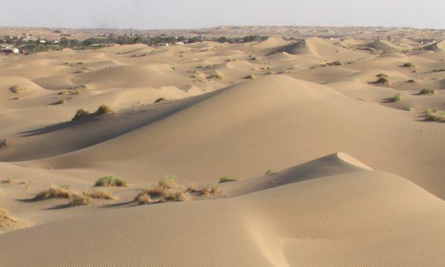 Grüne Inseln im Dünenmeer – Gegen Desertifikation in Turkmenistan