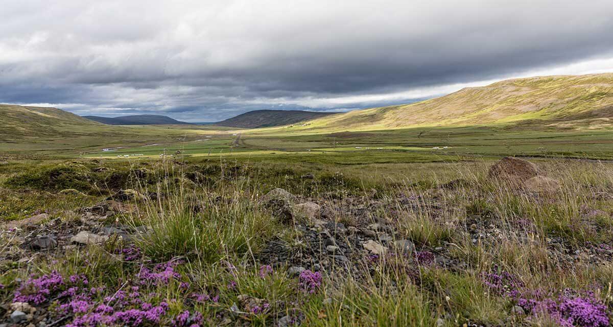 Island-Roadtrip 2017 – Von Hveragerði zur Halbinsel Snæfellsness (Tag 5 bis 8)